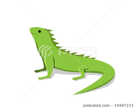 Friendly green iguana in flat style, vector 34997233
