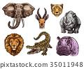 animal, elephant, vector 35011948