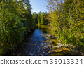 Rockwood conservation area 35013324