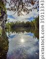 Rockwood conservation area 35013343