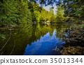 Rockwood conservation area 35013344