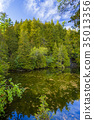 Rockwood conservation area 35013356