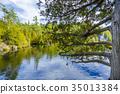 Rockwood conservation area 35013384