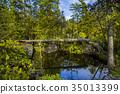 Rockwood conservation area 35013399
