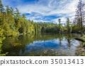 Rockwood conservation area 35013413