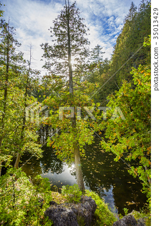 Rockwood conservation area 35013429