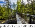 Rockwood Conservation Area 35013453
