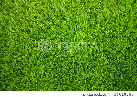人工草皮,人造草皮,草皮 35019260