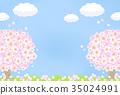 Cherry Blossoms 35024991