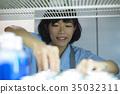 在便利店工作的女性 35032311