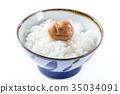 Kishu Minabe Minamitakaume白乾梅干 35034091