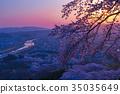 สวนปราสาทฟุนาโอกะ, ชิบาตะ - โช, เทศกาลซากุระ 35035649