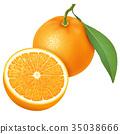 橙色 橘子 橙子 35038666