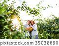 gardening, senior, family 35038690