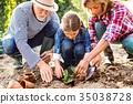gardening, grandfather, girl 35038728