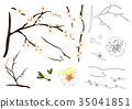 Plum Blossom Flower Outline 35041851