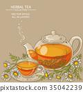 chamomile tea illustration 35042239