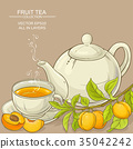 apricot, vector, teapot 35042242