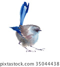 Winter fluffy soft bird hand drawn watercolor 35044438