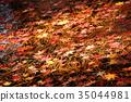 ฤดูใบไม้ร่วงของวัด Oshu Hiraizumi Chuson-ji Hiraizumi-cho จังหวัดอิวาเตะ 35044981