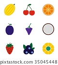 types, fruit, icon 35045448