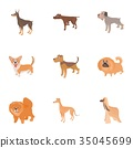 Faithful friend dog icons set, cartoon style 35045699