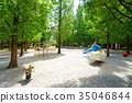 สวน,สวนสาธารณะ,ฤดูใบไม้ผลิ 35046844