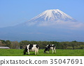 mountain, fuji, mt 35047691