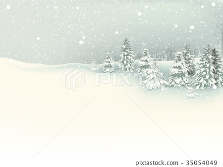 Winter Christmas Background 35054049