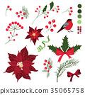 christmas, vector, poinsettia 35065758
