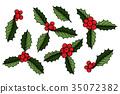 mistletoe,christmas,leaf 35072382