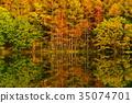 ฤดูใบไม้ร่วง,ต้นเมเปิล,แหล่งน้ำ 35074701