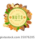 Poster, banner with nuts and seeds in round shape 35076205