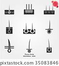 Epidermis icon 35083846