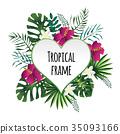 tropical, frame, vector 35093166