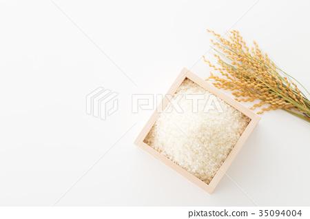 Rice 35094004