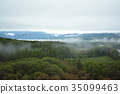 overcast, mountain, forest 35099463