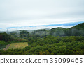 overcast, mountain, forest 35099465