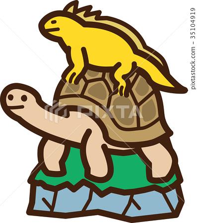 vector, vectors, giant tortoise 35104919