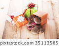 Gifts boxes and gingerbread 35113565