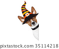 costume halloween hat 35114218