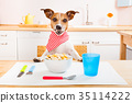 animal, dining, dog 35114222