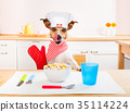 animal, chef, cuisine 35114224