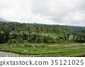 풍경, 논, 계단식 논 35121025