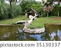 분홍, 펠리칸, 연못 35130337