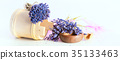 Bunch of lavender flowers on white background 35133463