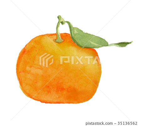 mandarin orange, with leaves, with greens 35136562