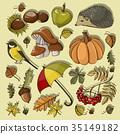 autumn, symbol, set 35149182