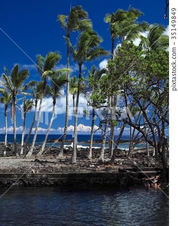 Hawaii Island Aharanui Beach Park 35149849