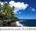 Scenery of Island of Hawaii 35150048